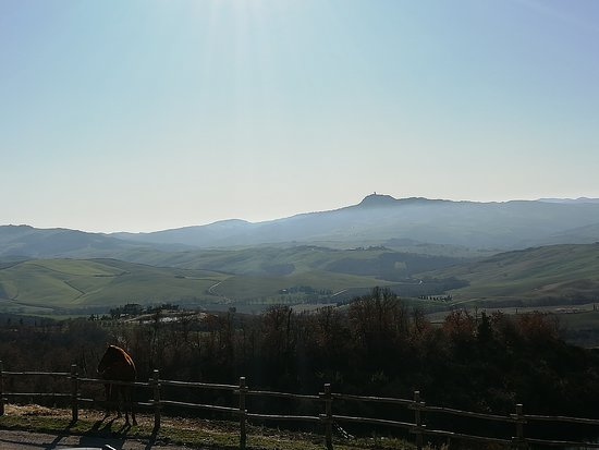 Tuscany Equestrian Picture