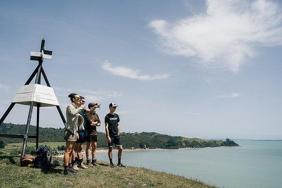 Wild Adventures New Zealand - Auckland Hiking Tours