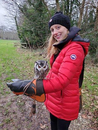 Κίλκεννι, Ιρλανδία: The little owl was so cute and affectionate! I think his name was Eggbert.