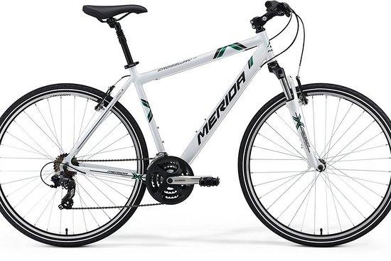 Aluguer Bicicletas Urbanas / Urban Bikes Rental