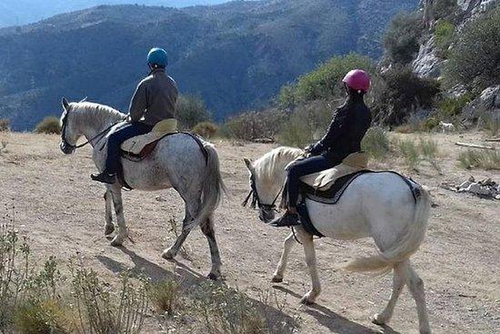 Tour - equitazione 2 ore + pranzo + via