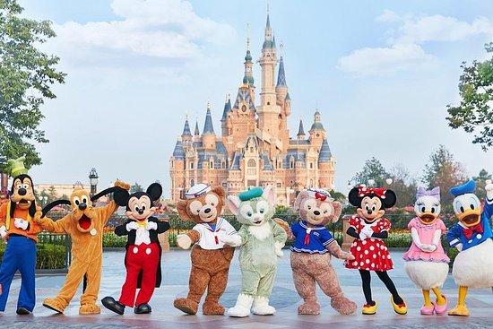 1 pass giornaliero per Disneyland