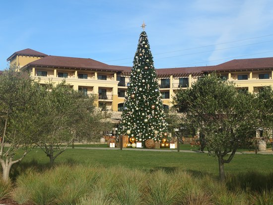 Christmas Tree, Meritage Resort, Napa, Ca