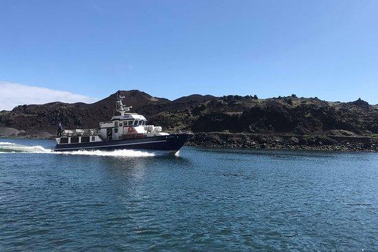 Boat Tours in Vestmannaeyjar