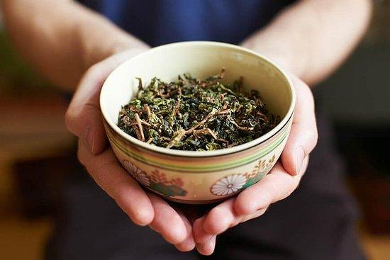 台北の茶園:少人数グループでの台北市内観光