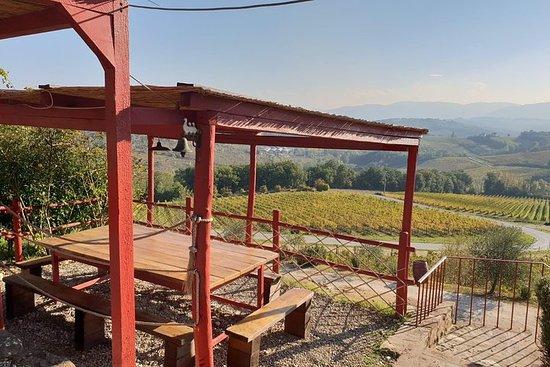 Private Half-Day Wine and Food in Chianti Classico from Florence – fotografia