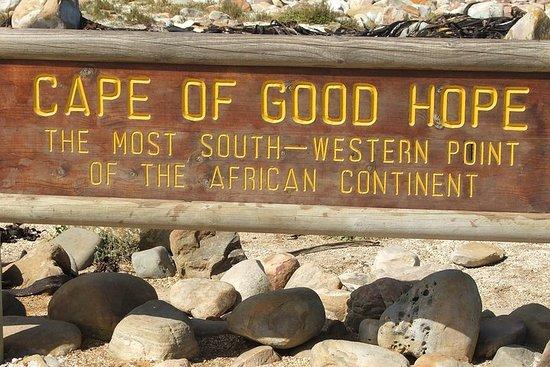 私人岸上游覽:好望角開普角企鵝Kirstenbosch