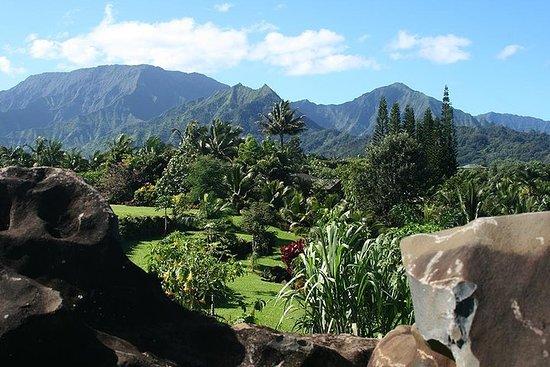 Hopp over linjen: Princeville Botanical Gardens Tour og...