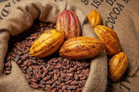 Charley's Chocolate Factory Tour, Mission Beach Inkludert Aussie Farm...