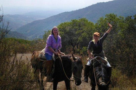 Paseo a caballo en la precordillera...