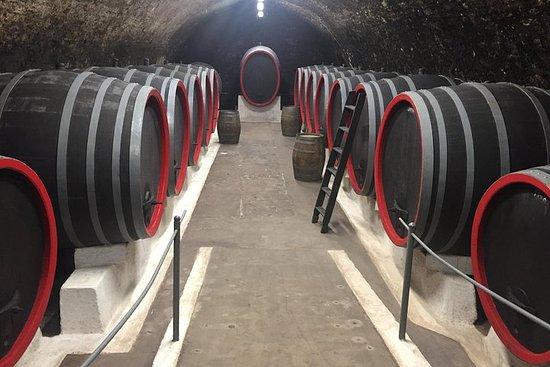 Tour privato di vino, cibo e patrimonio da Praga alla Boemia