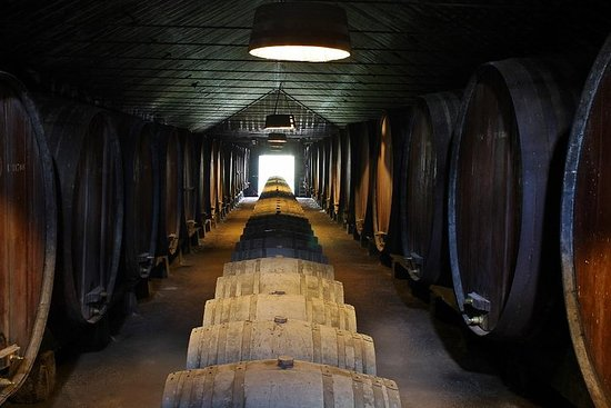 Lisbon Wine Tasting Private Tour in...