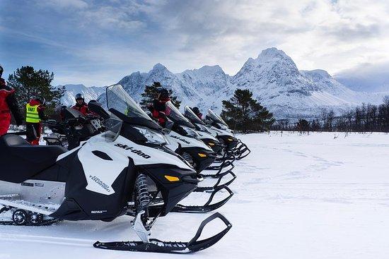 Snowmobile Safari with Camp Troll