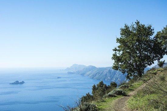 Fra Sorrento: Path of the Gods Hiking...