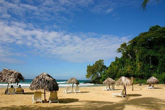 Små gruppe Speed Boat og Snorkel Tour fra Bocas del Toro