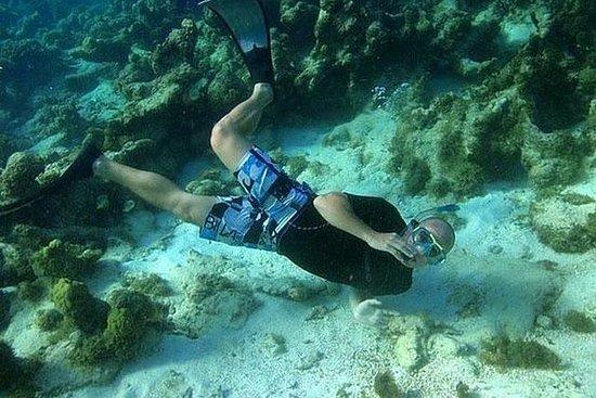 Excursión de snorkel a la laguna y al arrecife de coral