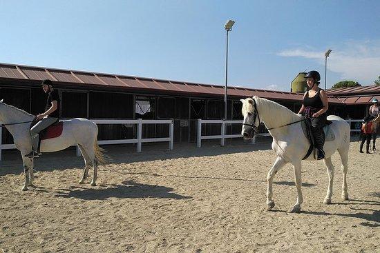 horses ride Salou