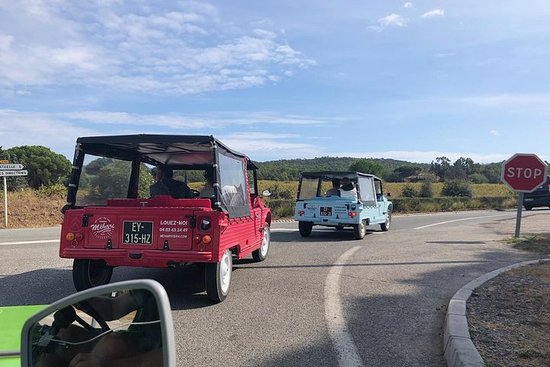Private excursion from Cannes to the...