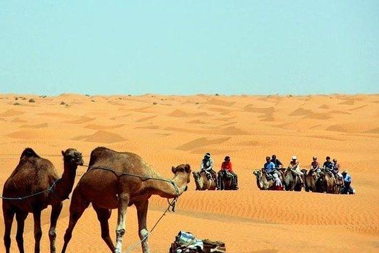 To dager 4x4 PRIVATE SAFARI fra Sousse, Hammamet, Tunis, kun for 2...