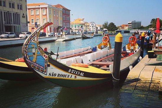 Excursion d'une journée à Aveiro et...