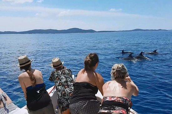 フワル、ブラチ島、パクレニ島へのプライベートスピードボートツアー