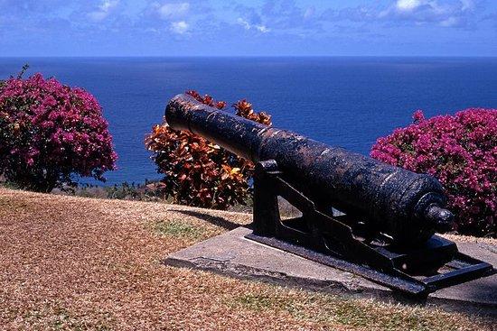 L'Île-Tobago visite touristique de la...