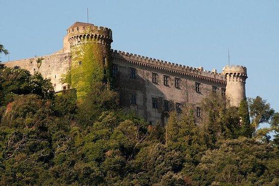 Gita di un giorno con partenza da Roma: Lago di Bracciano e aree