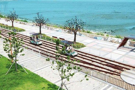 仁川海邊鐵路自行車和海鷗餵養一日遊照片