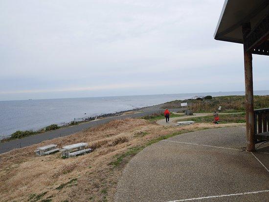 Yumesakinami Park