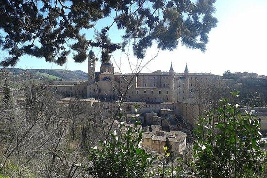 Visite du Palais des Doges et de la ville d'Urbino