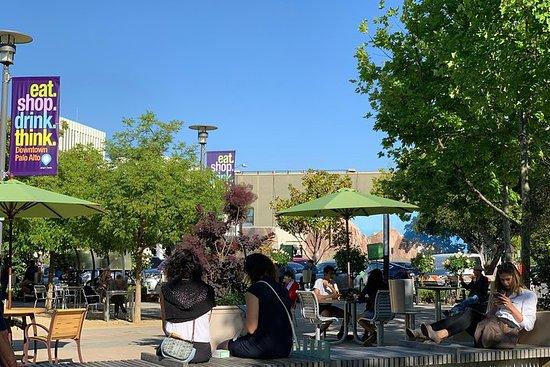Visite à pied de Palo Alto
