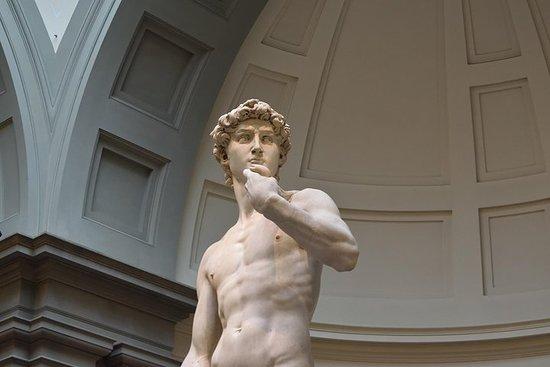 Skip the Line: Florence - Ticket to See Michelangelo's David صورة فوتوغرافية