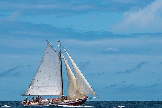 Anguilla Half-Day Seil og Snorkel Adventure til Little Bay