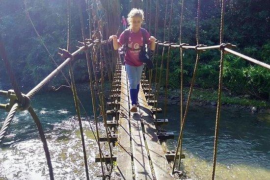 Mulu Headhunter's Trail - Trekking di 3 giorni ed esperienza culturale