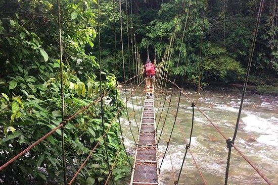 Mulu Show Caves & Headhunter's Trail - Speleologia e trekking di 4