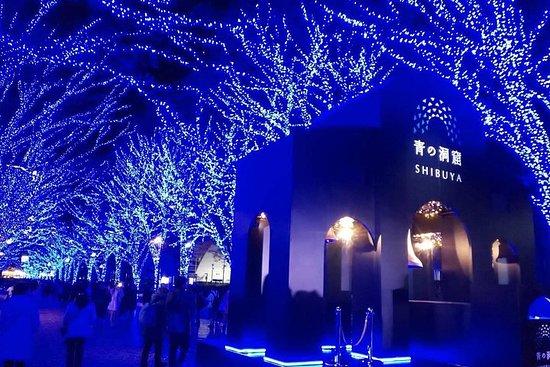 The prettiest winter illumination in Tokyo, Japan!