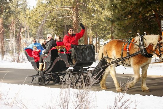 Sand Harbor Lake Tahoe State Park Private Sleigh Ride