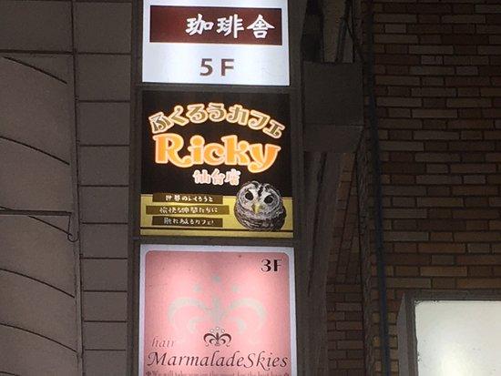 Owl cafe Ricky Sendai