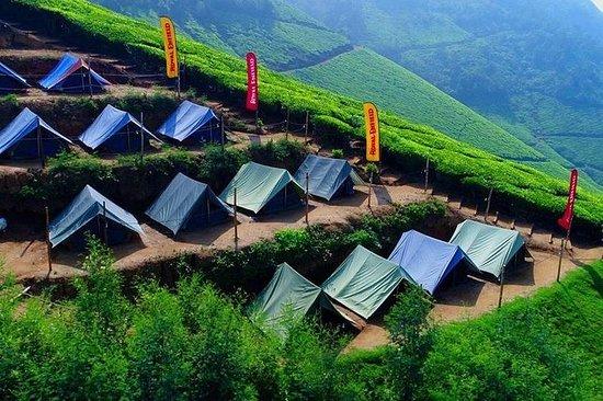 Camping à Munnar - Dîner et petit-déjeuner inclus