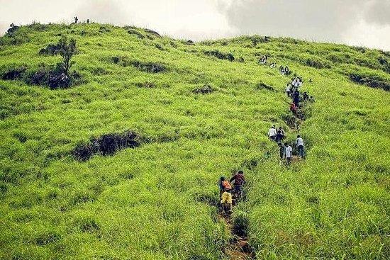 Trekking, ciclismo e tour in campeggio a Wayanad
