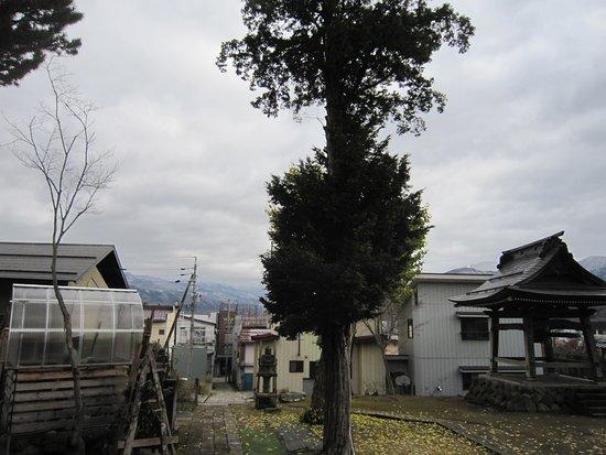 Myosen-ji Temple (Atagomachi)