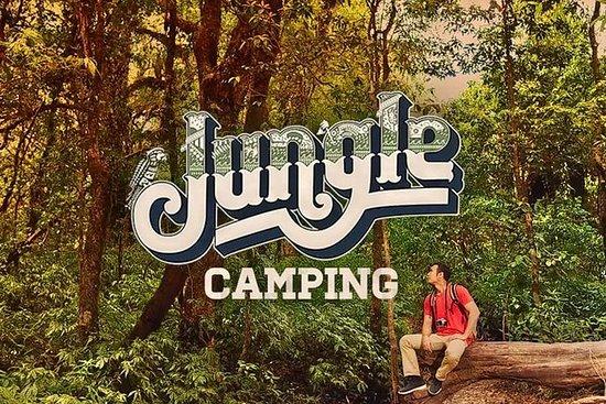 Camping dans la jungle et feu de joie à Dandeli - Témoin de la faune
