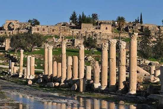 Full Day Amman to Umm Qais with Jerash Ajloun Tour With Lunch...