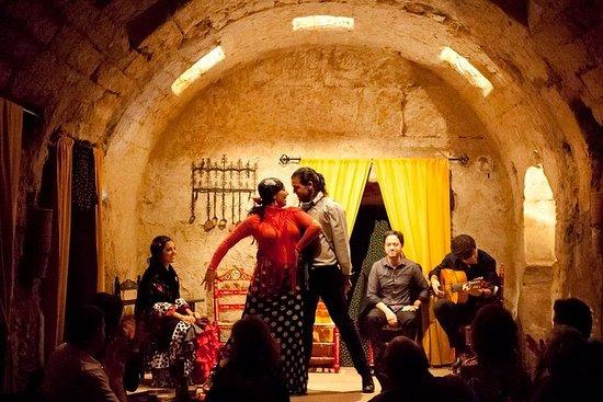 Spectacle de flamenco au bains maures...