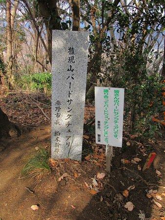 権現山バードサンクチュアリの石碑も有ります。