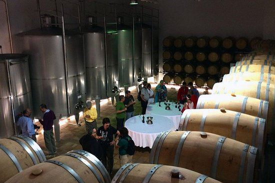 Benidorm Winery et Tapas Cooking Class Gourmet Day