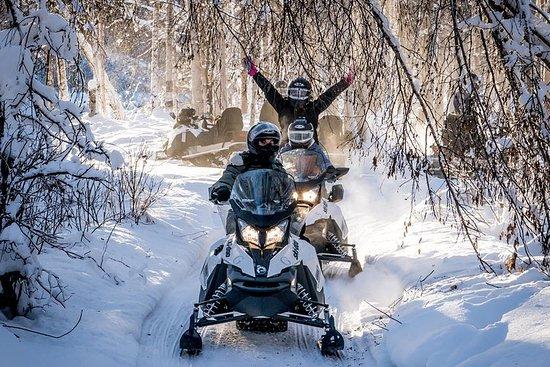 Excursion guidée en motoneige à...