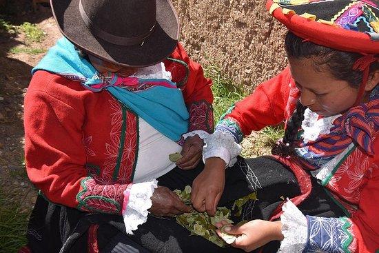 社区旅游全日Cuyo Chico-皮萨克库斯科