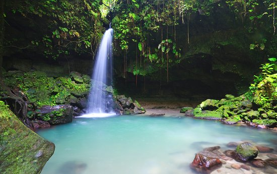 Nature Island Tours