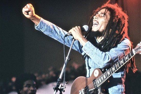 Ganztägiger Bob Marley Ausflug von...